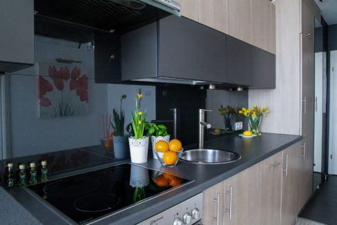 Appartement Hollerich cuisine Luxembourg